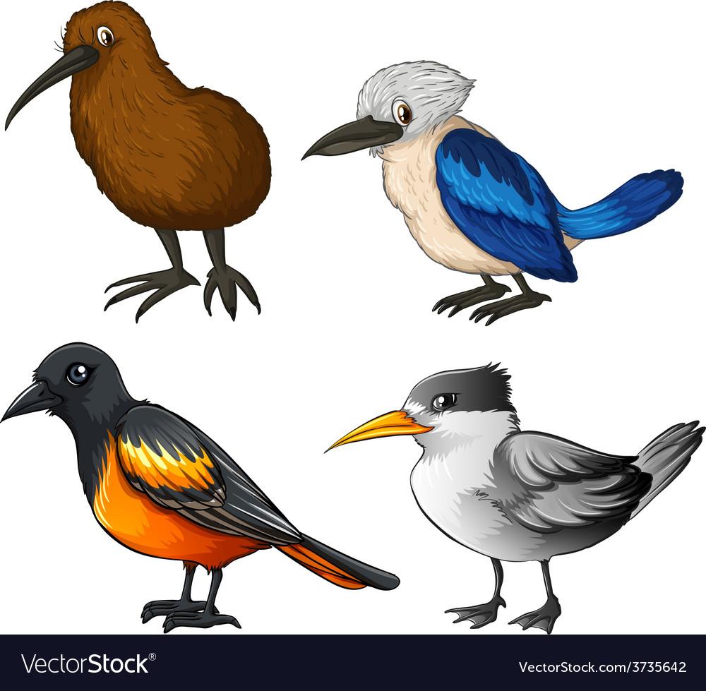 Birds vector   Price: 3 Credit (USD $3)