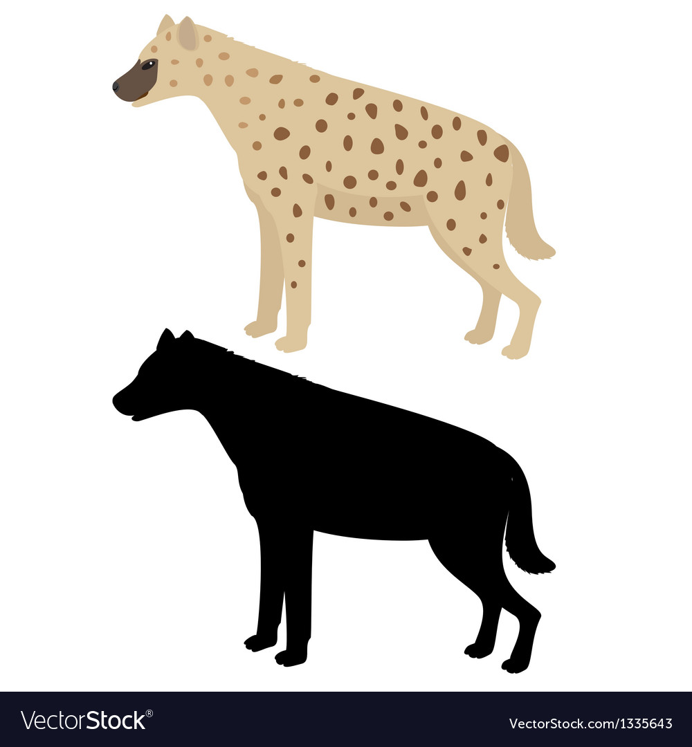Hyena and its silhouette vector | Price: 1 Credit (USD $1)