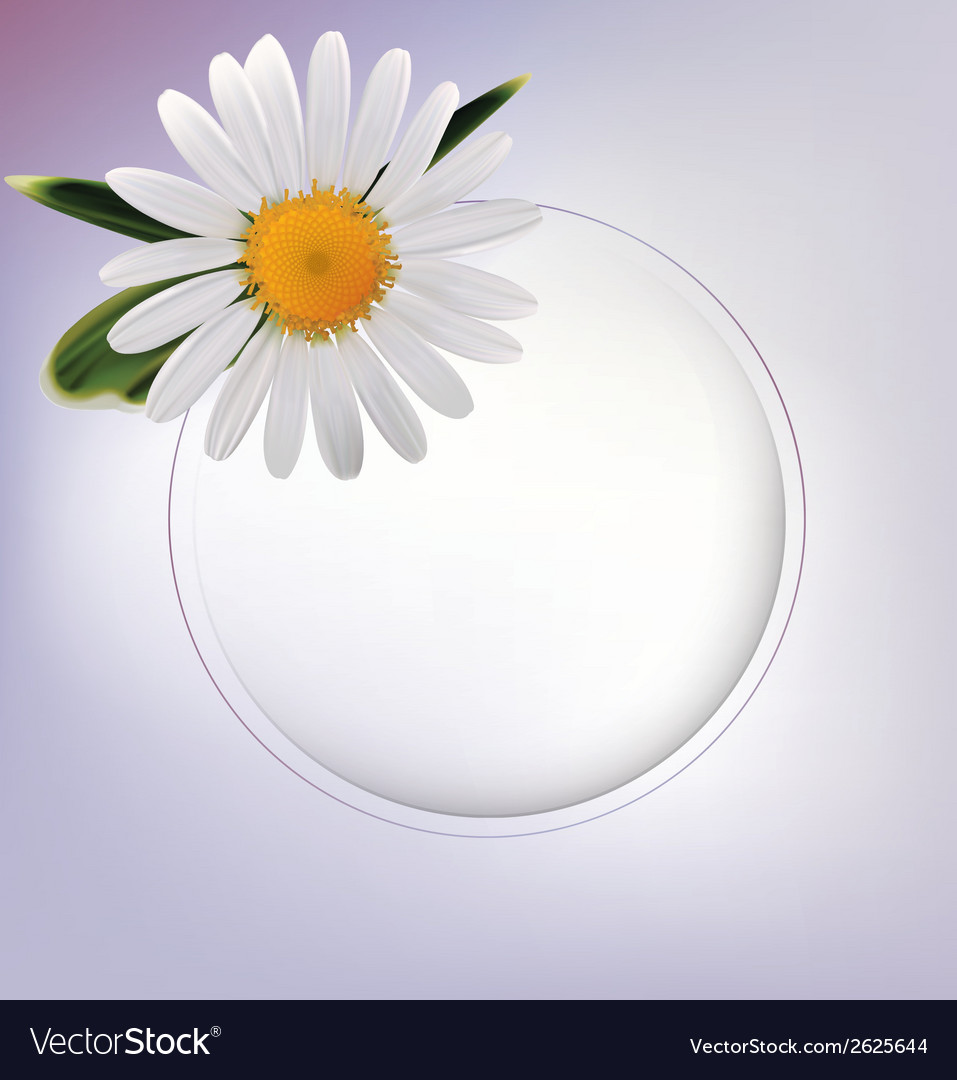 Abstract background with daisy and leafs vector | Price: 1 Credit (USD $1)