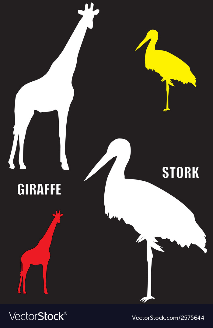 Giraffe and stork vector | Price: 1 Credit (USD $1)