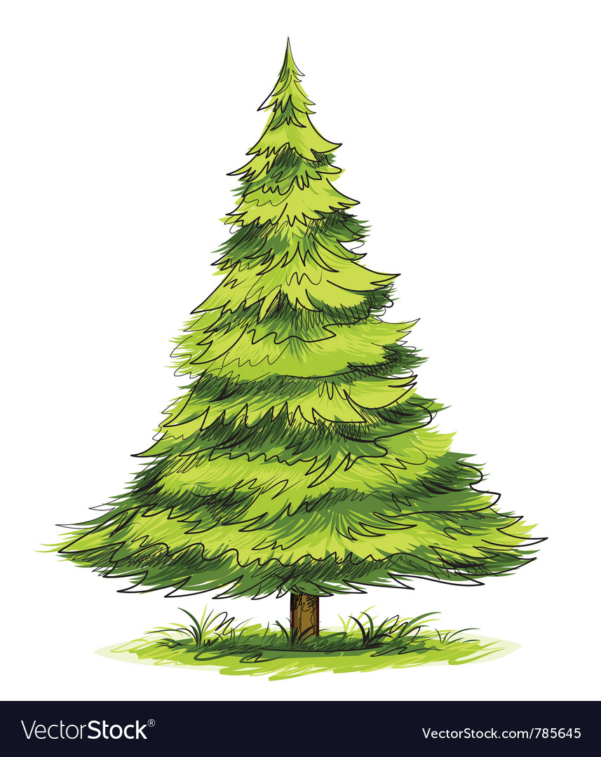 Green christmas tree vector | Price: 1 Credit (USD $1)
