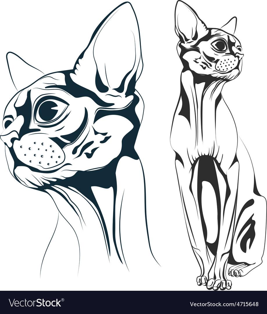 Cat vector   Price: 1 Credit (USD $1)