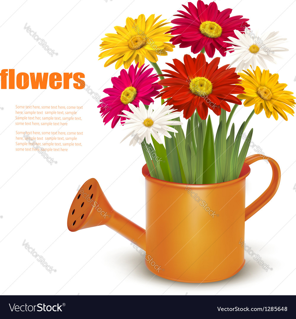 Colorful fresh spring flowers in orange watering vector | Price: 3 Credit (USD $3)