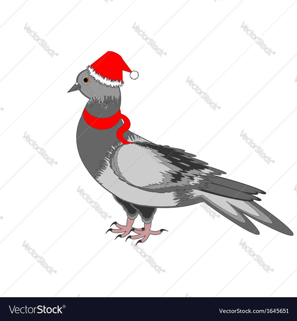 A christmas dove on a white background vector | Price: 1 Credit (USD $1)
