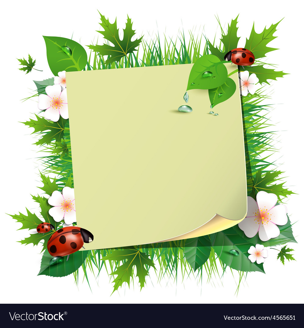 Spring background with grass and ladybug vector | Price: 1 Credit (USD $1)