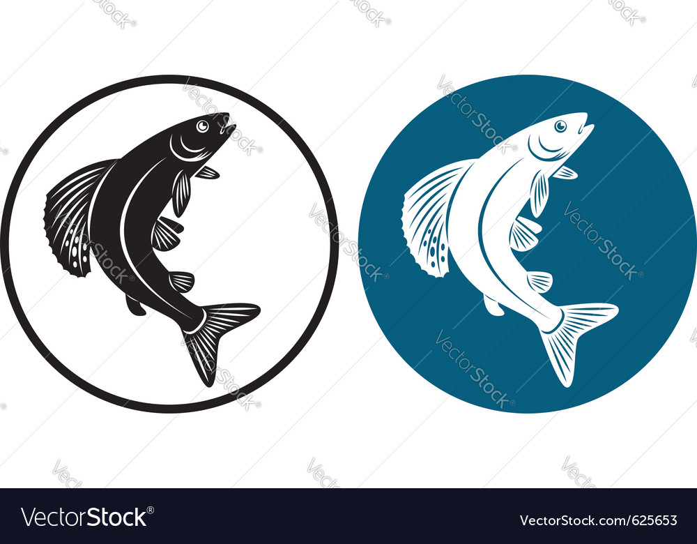 Grayling fish vector