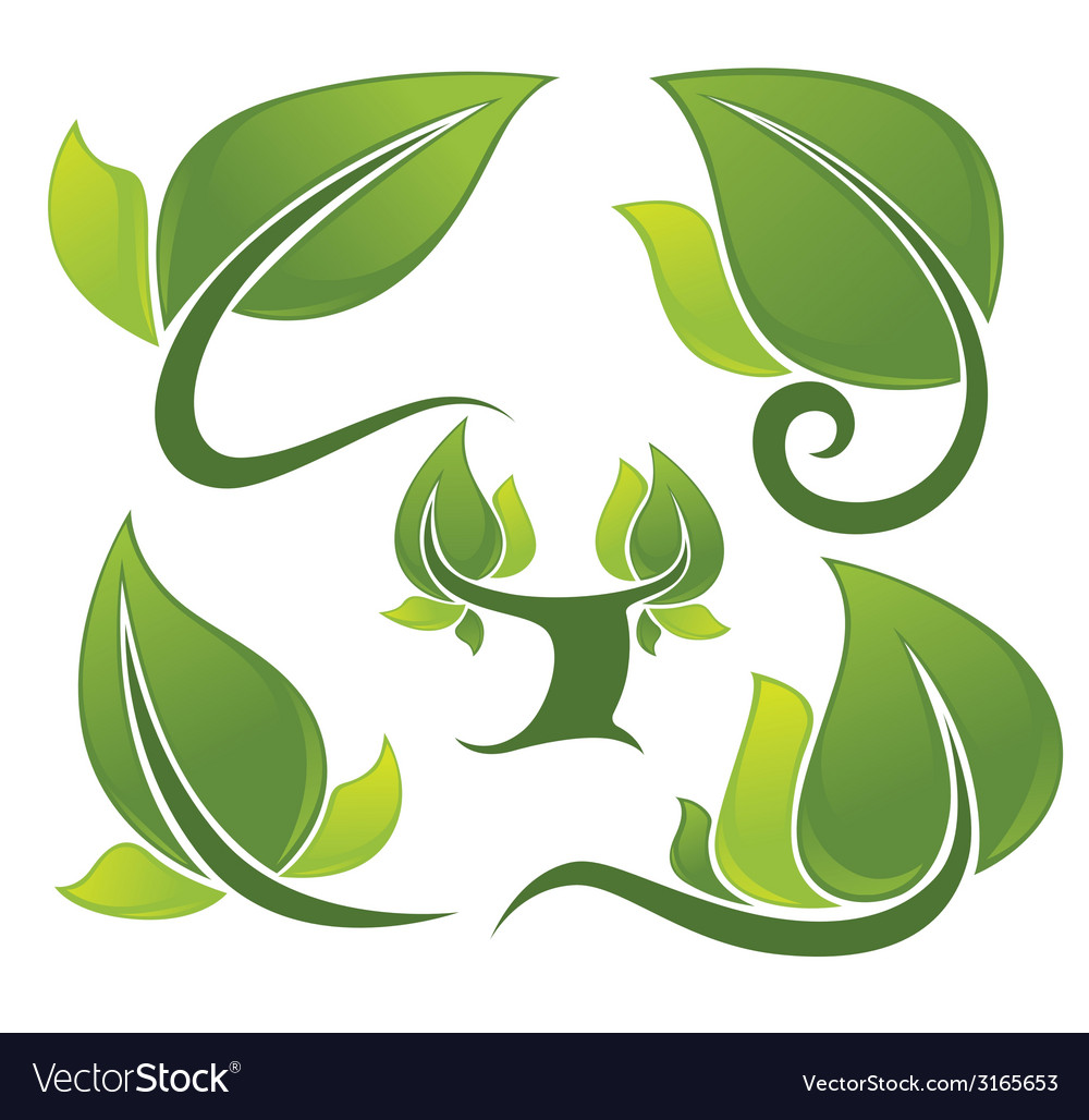 Tree and leaves vector | Price: 1 Credit (USD $1)