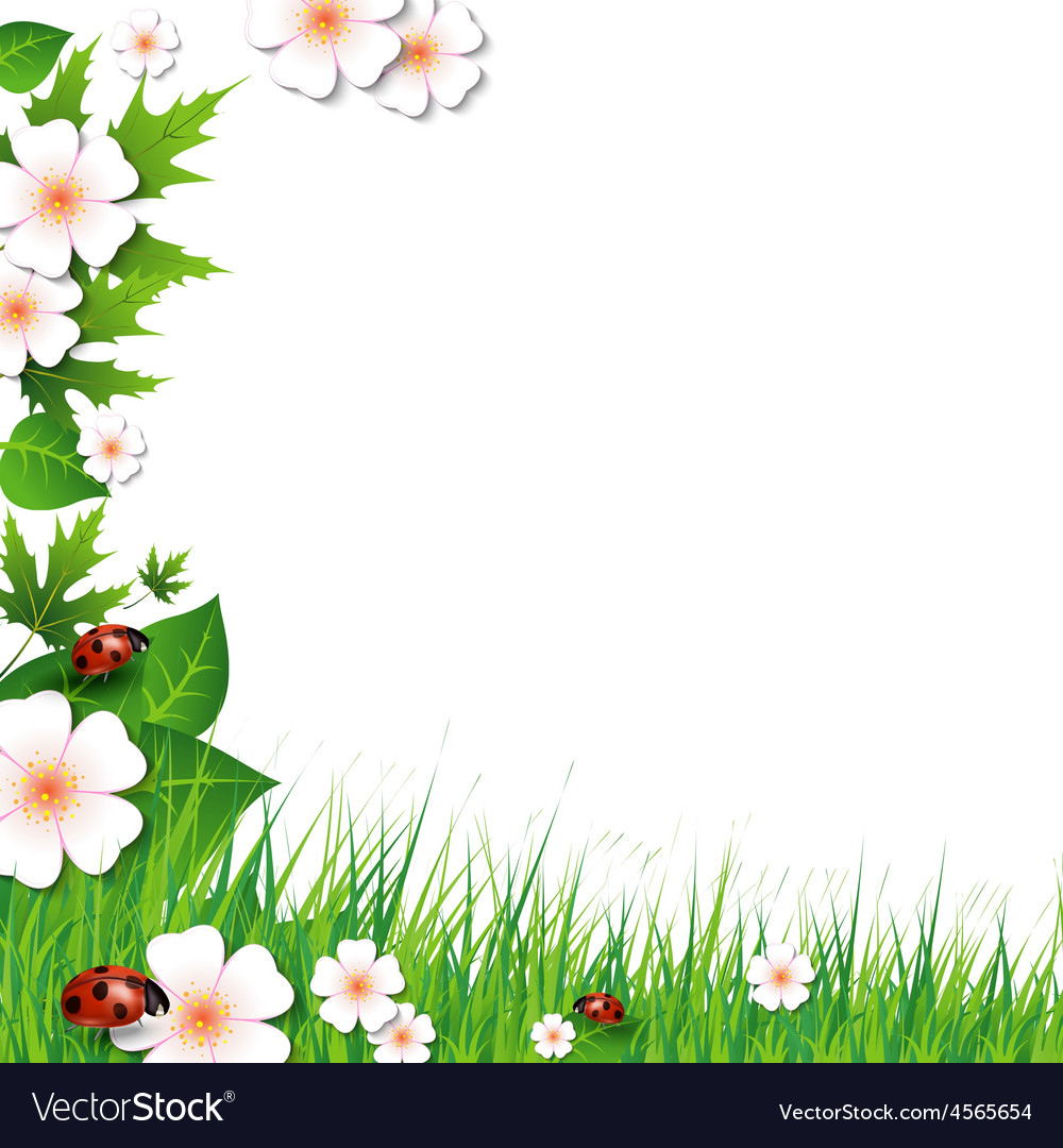 Spring background with grass vector | Price: 1 Credit (USD $1)