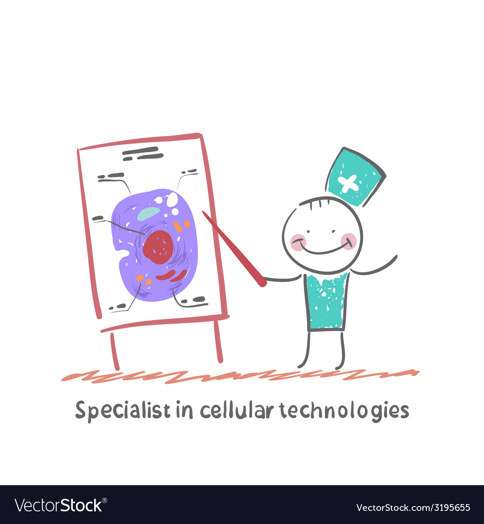 Specialist in cellular technologies speaks cells vector | Price: 1 Credit (USD $1)