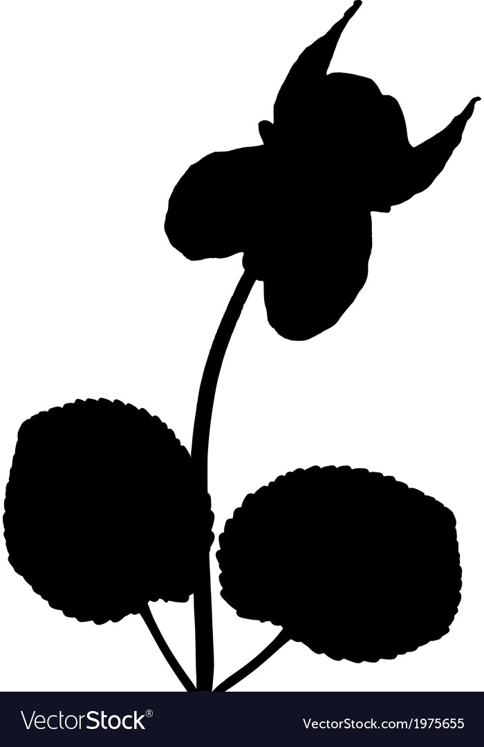 Viola with leaves vector | Price: 1 Credit (USD $1)