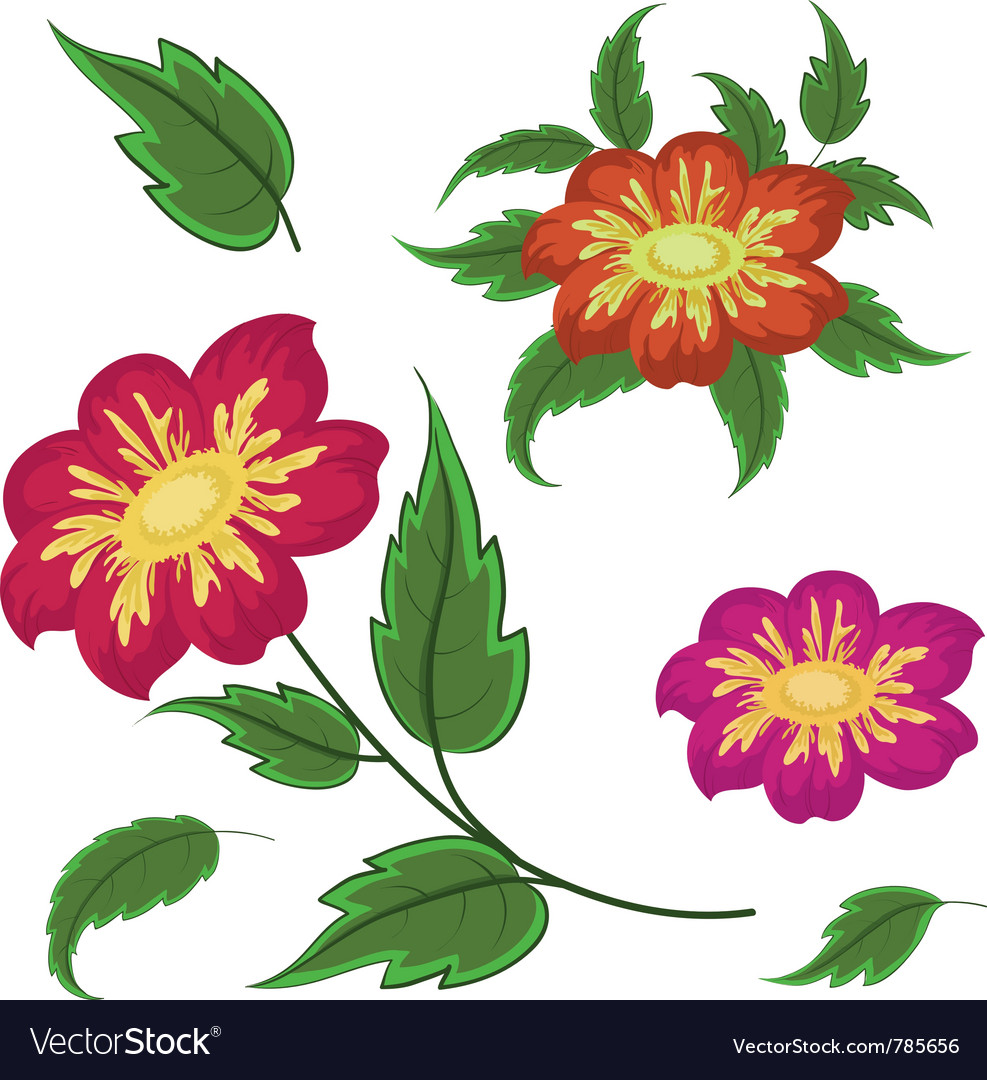 Flowers and green leaves dahlia vector | Price: 1 Credit (USD $1)
