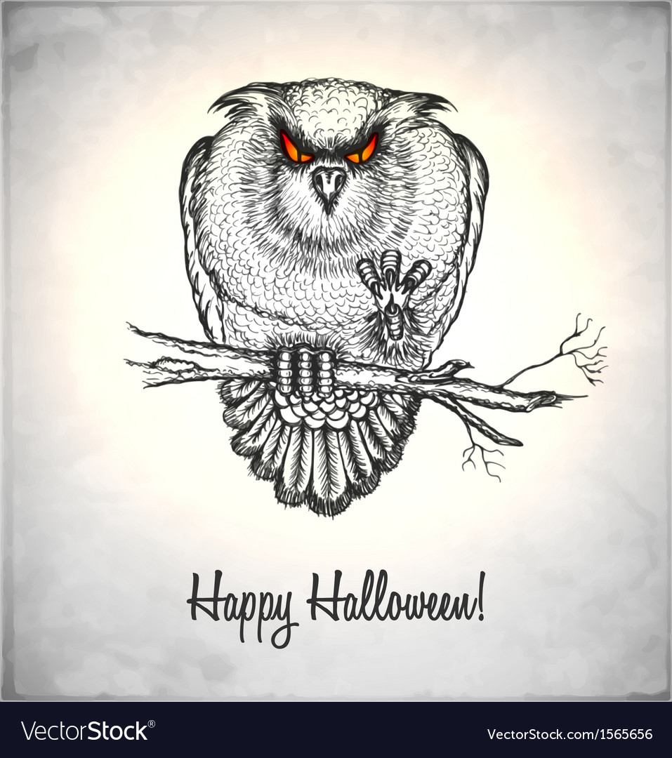 Horror owl in a sketch style vector | Price: 1 Credit (USD $1)