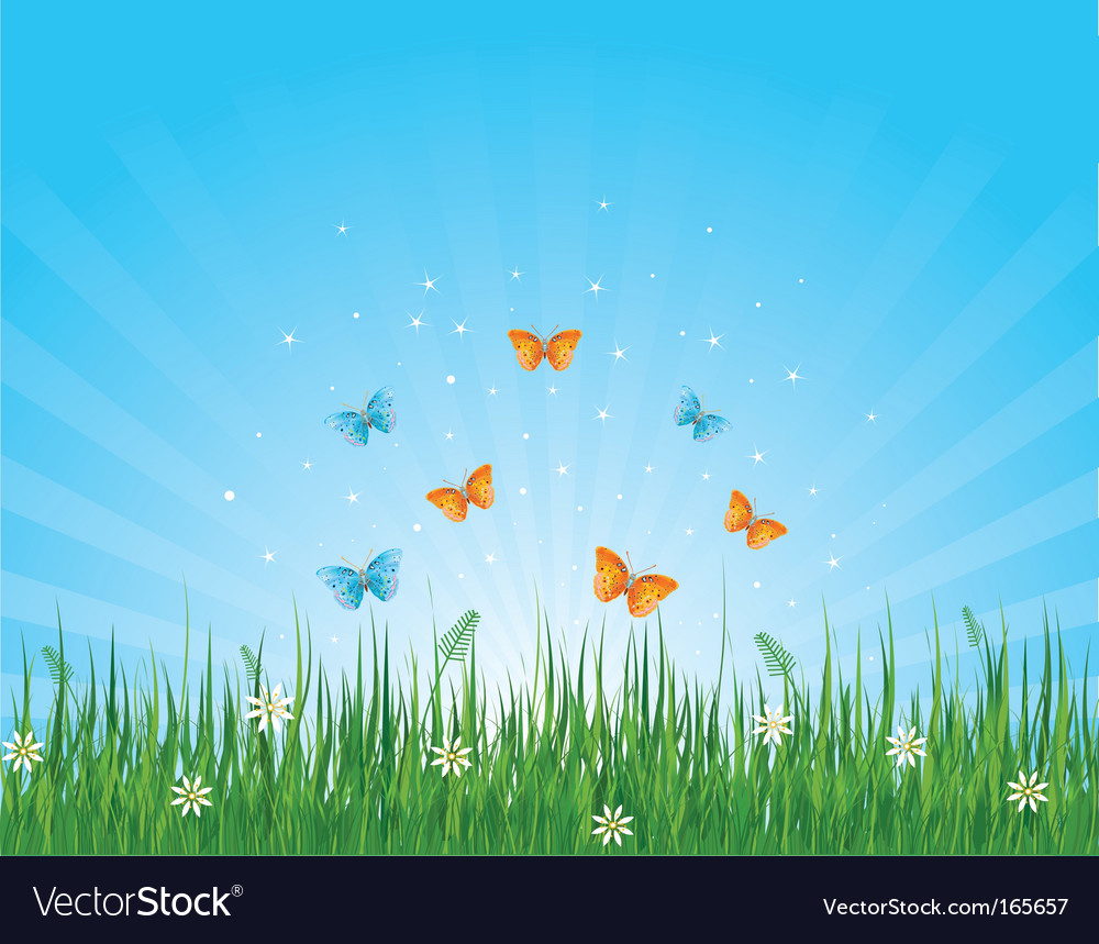 Grassy field and butterflies vector | Price: 1 Credit (USD $1)