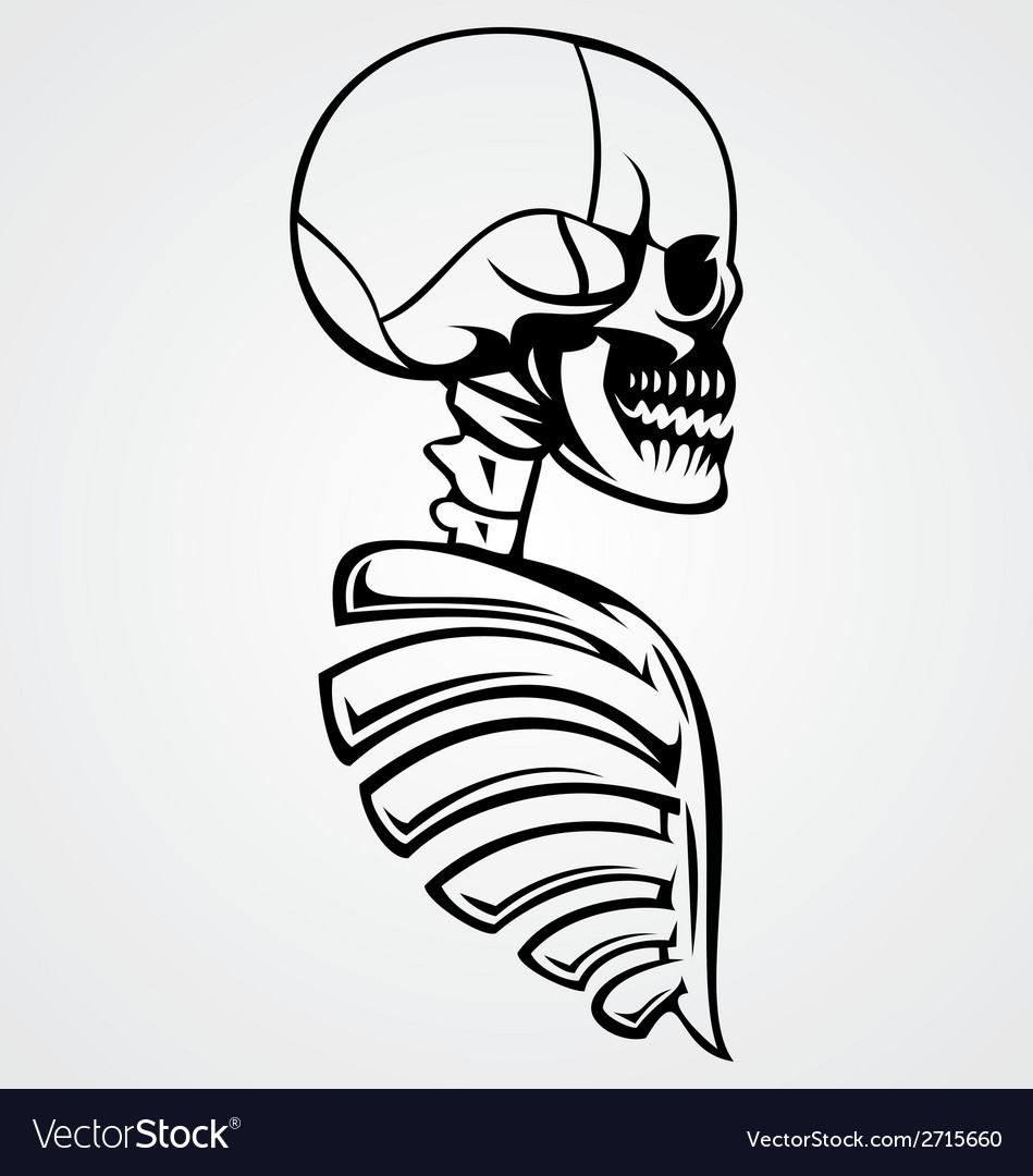 Skull draw vector | Price: 1 Credit (USD $1)