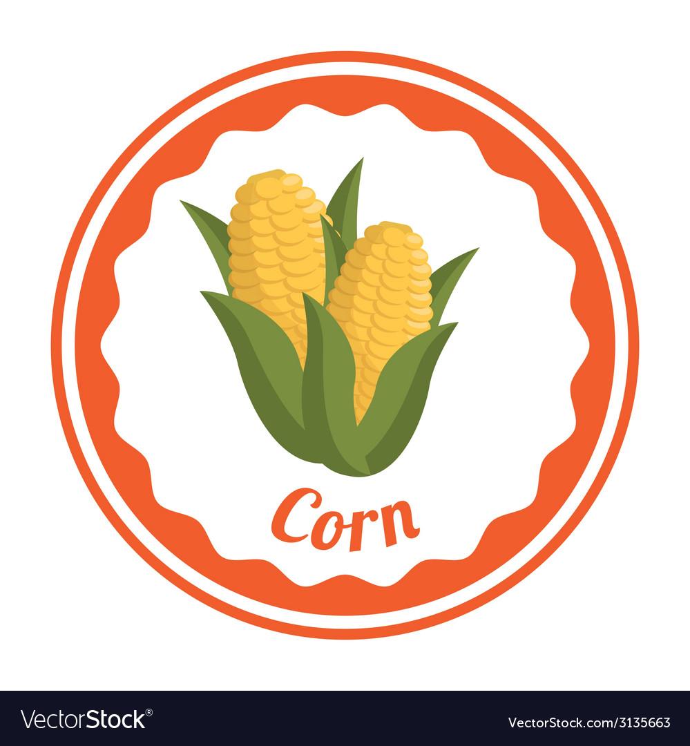 Corn design vector | Price: 1 Credit (USD $1)