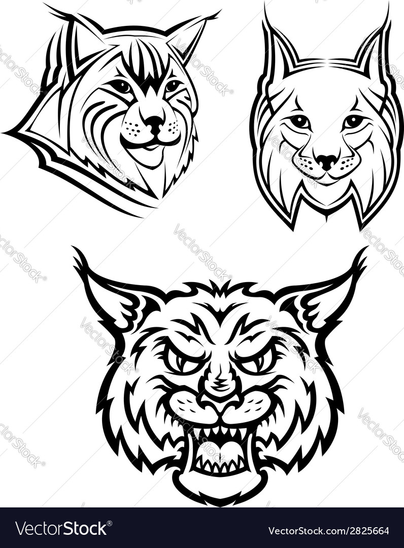 Wild bobcat or lynx mascots vector | Price: 1 Credit (USD $1)