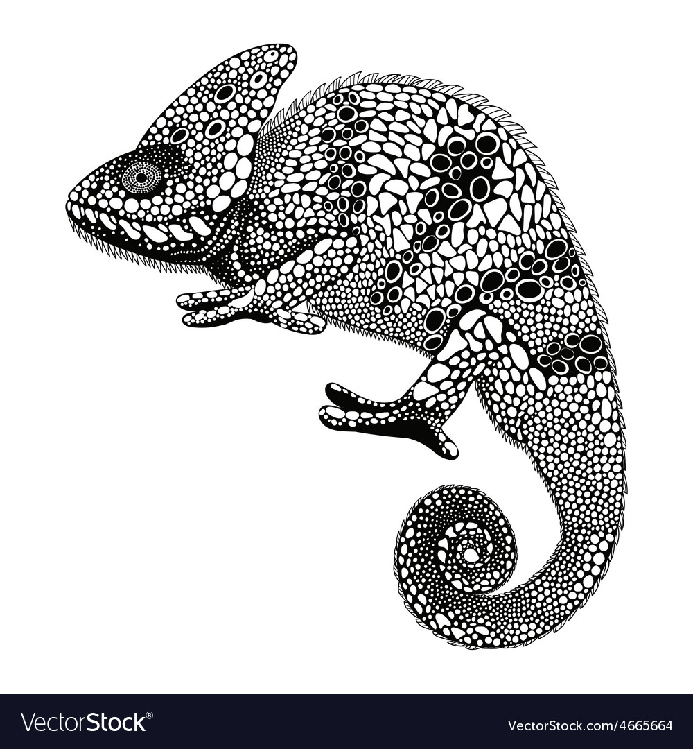 Zentangle stylized chameleon hand drawn reptile in vector | Price: 1 Credit (USD $1)