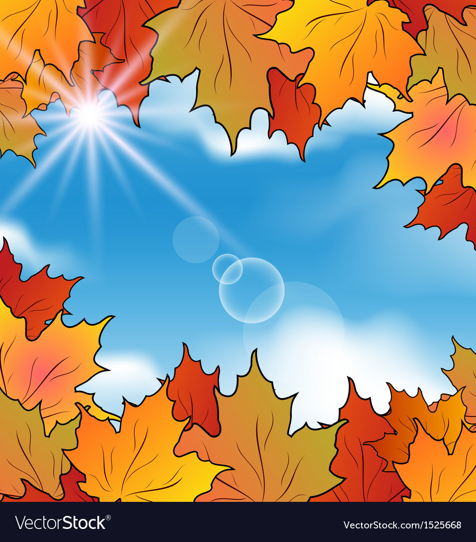 Autumn leaves maple sky clouds vector | Price: 1 Credit (USD $1)