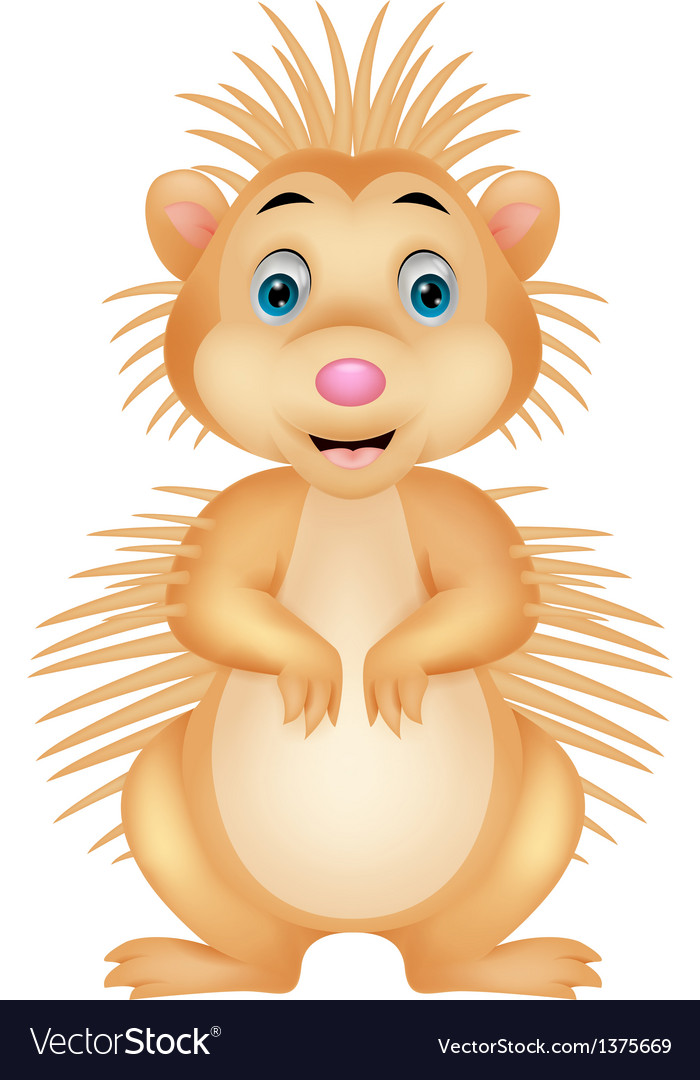 Cute porcupine cartoon vector | Price: 1 Credit (USD $1)