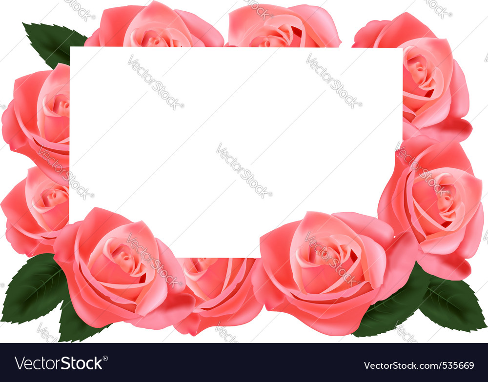Pink roses and paper card vector | Price: 3 Credit (USD $3)