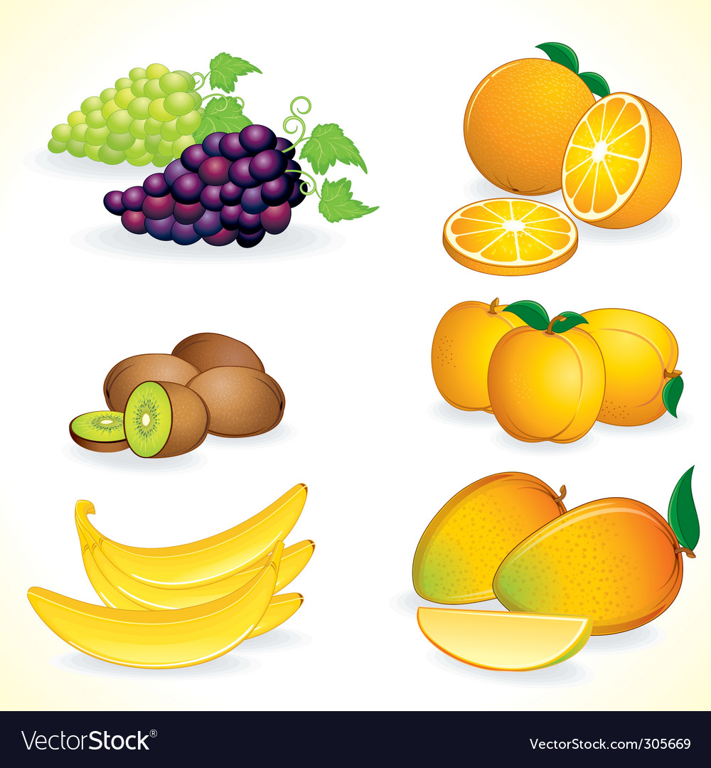 Tropic fruits vector | Price: 3 Credit (USD $3)