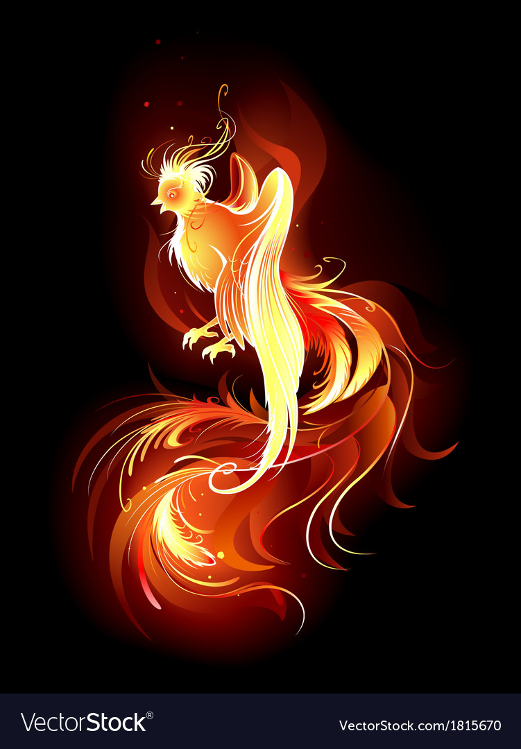 Fiery bird vector | Price: 1 Credit (USD $1)