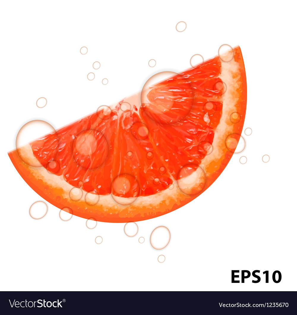 Fresh juicy grapefruit background vector | Price: 1 Credit (USD $1)