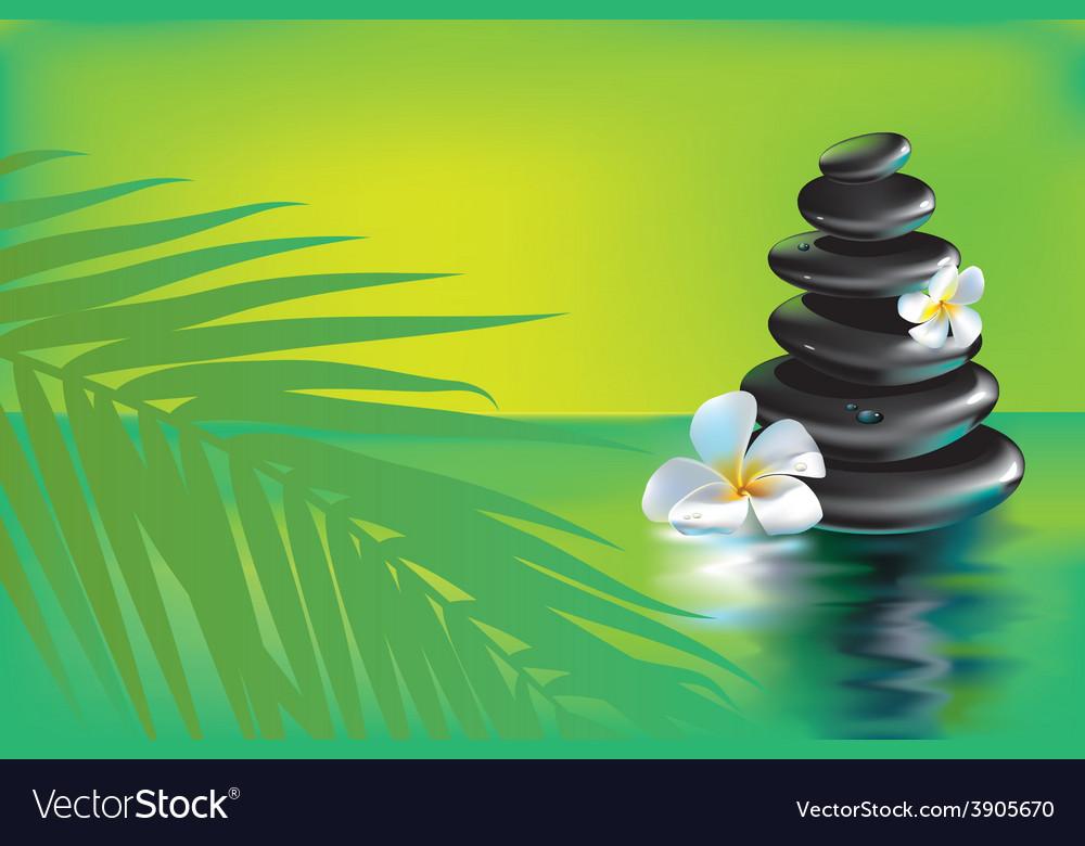 Spa stones in tropics vector   Price: 3 Credit (USD $3)