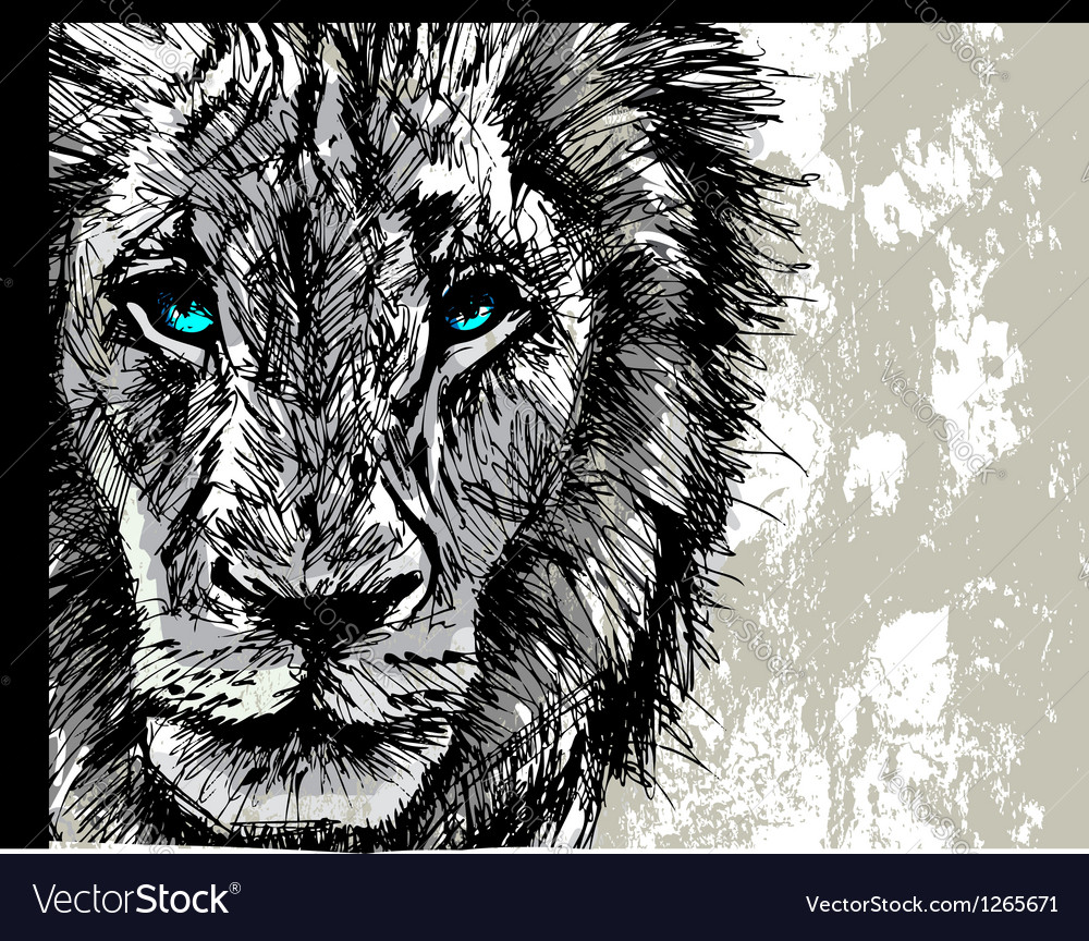Hand drawn sketch of a lion looking intently at th vector | Price: 1 Credit (USD $1)