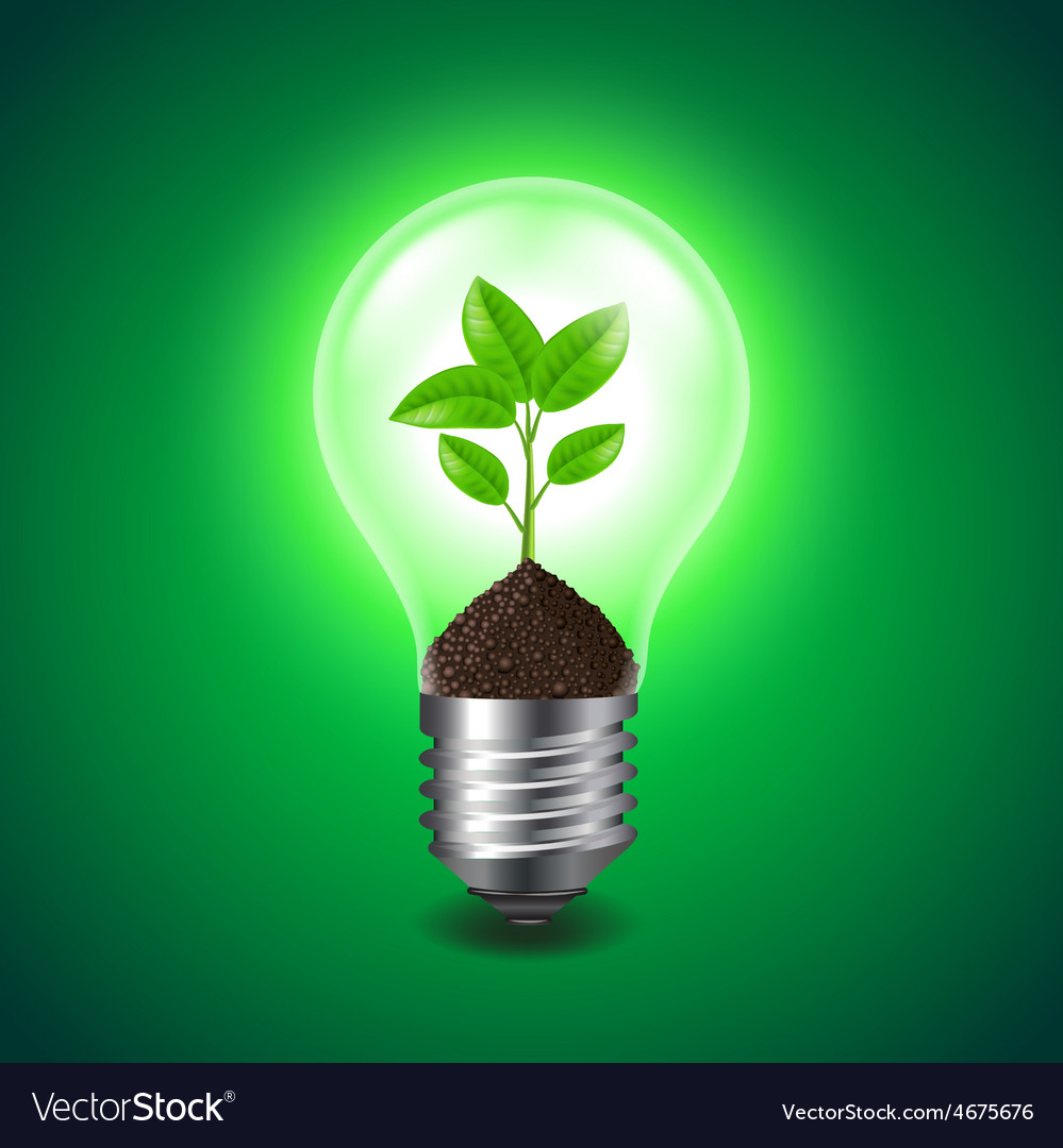 Growing sprout inside the light bulb vector | Price: 3 Credit (USD $3)
