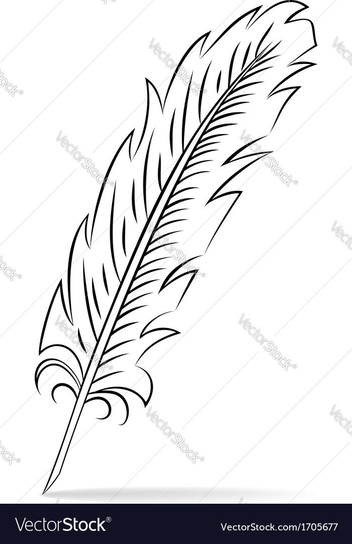 Hand drawn feather vector   Price: 1 Credit (USD $1)