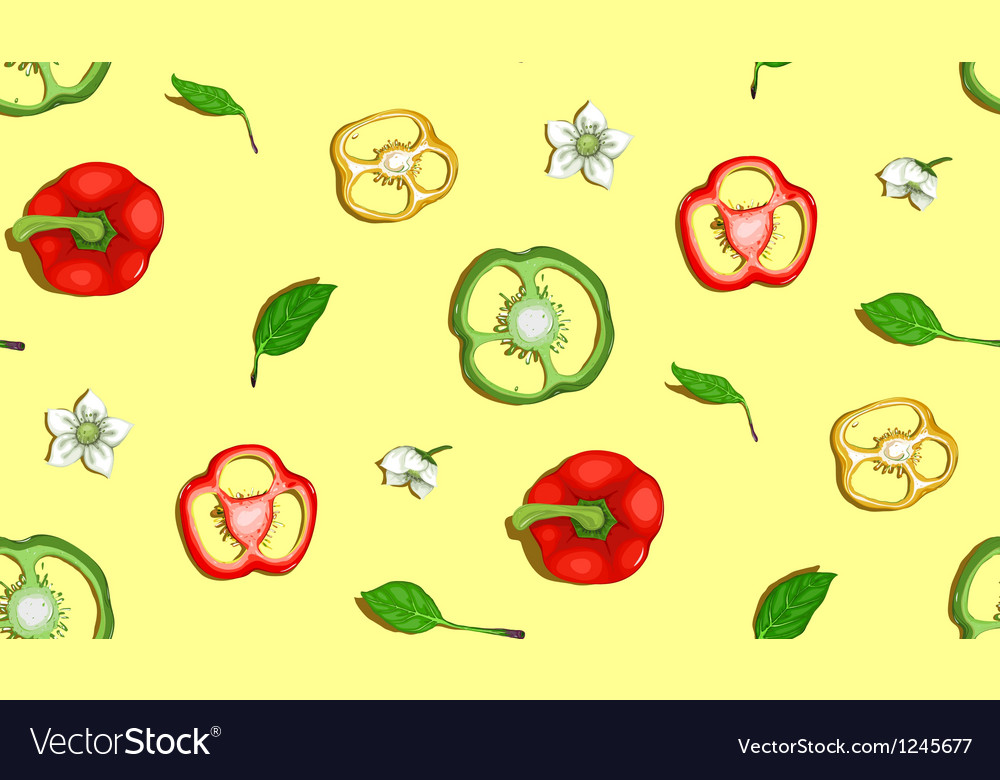 Paprika sweet pepper seamless background vector | Price: 1 Credit (USD $1)
