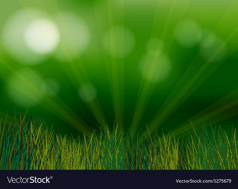 A spotlight in the garden vector | Price: 1 Credit (USD $1)