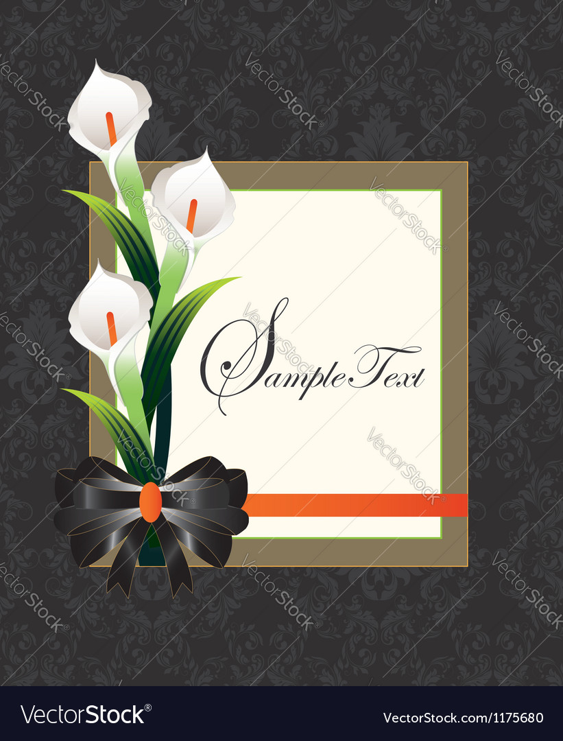 Calla lilies on black damask background vector | Price: 1 Credit (USD $1)