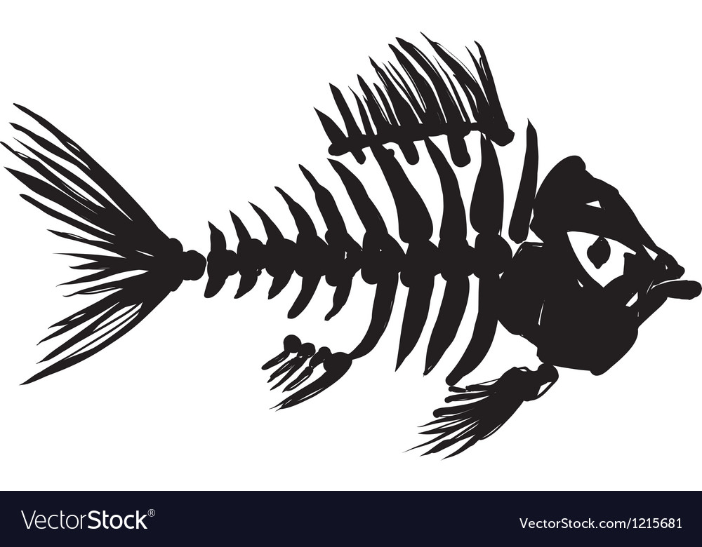 Fish skeleton vector | Price: 1 Credit (USD $1)