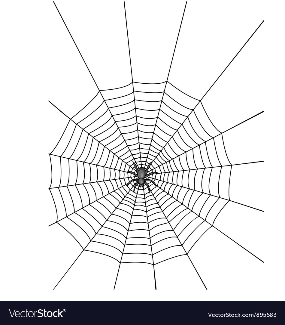 Spider with web vector | Price: 1 Credit (USD $1)
