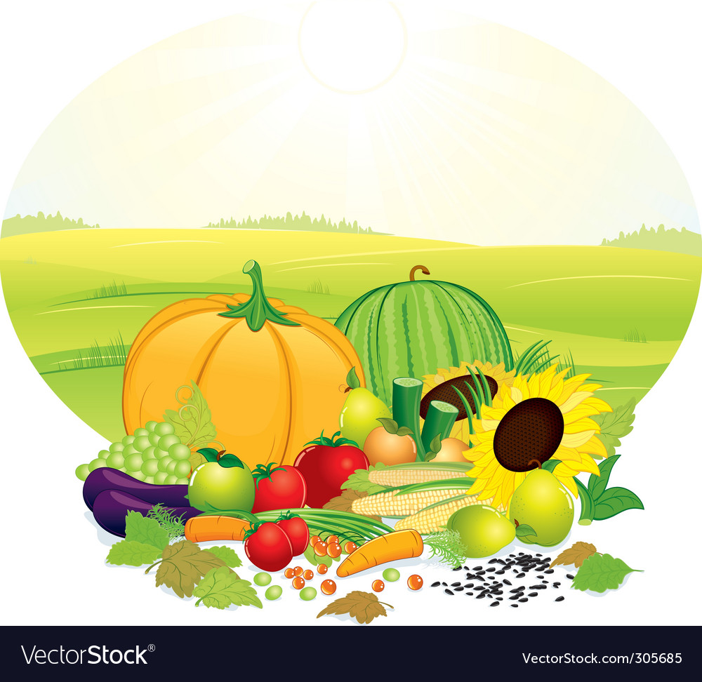Fresh crop vector | Price: 3 Credit (USD $3)