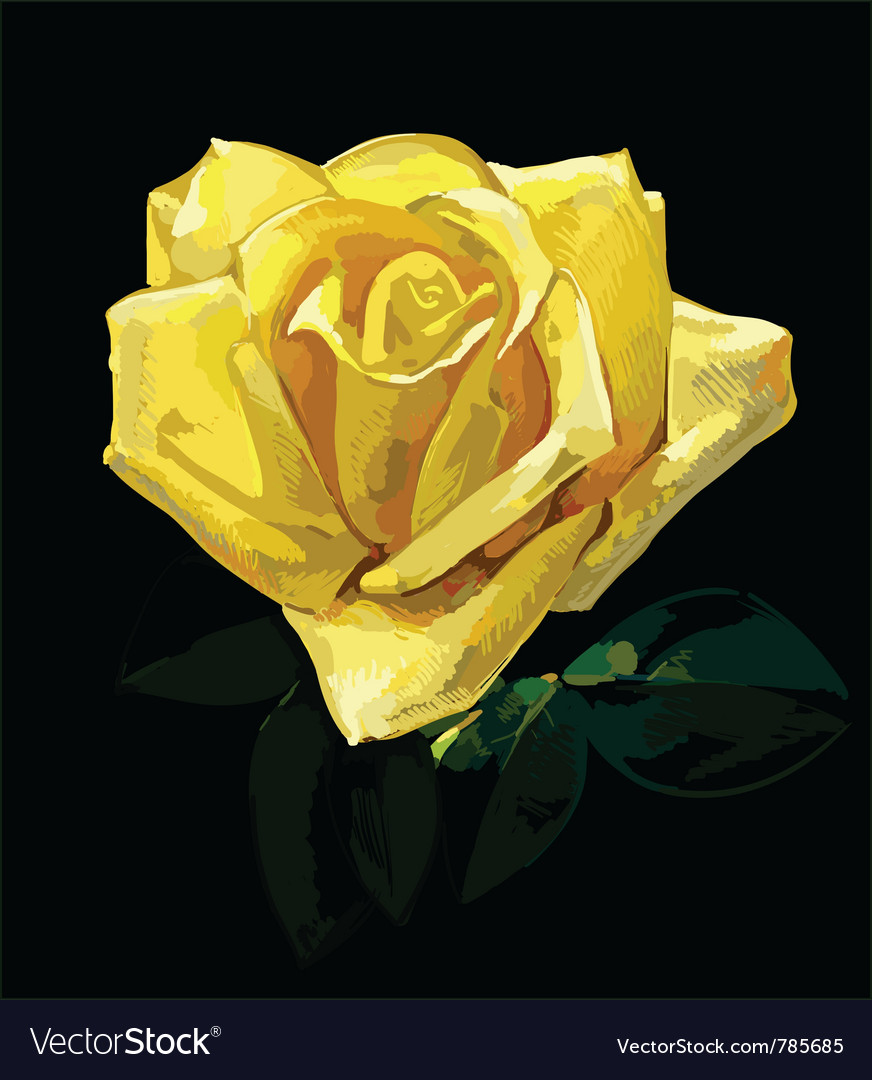 Rose hand drawing vector | Price: 1 Credit (USD $1)