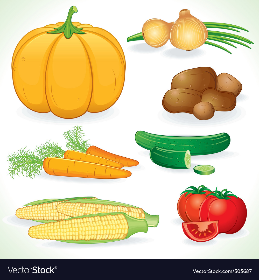 Fresh vegetables vector | Price: 3 Credit (USD $3)
