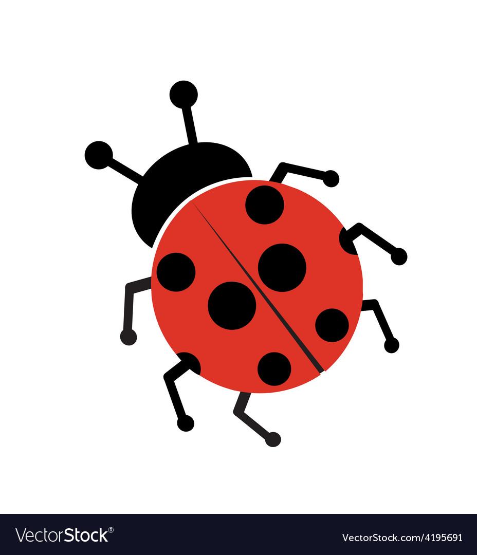Ladybug isolated on white vector