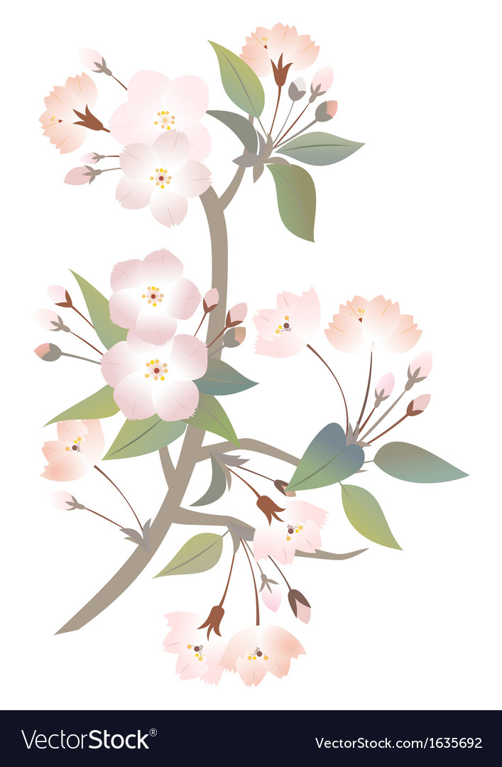 Abstract apple tree branch vector | Price: 1 Credit (USD $1)