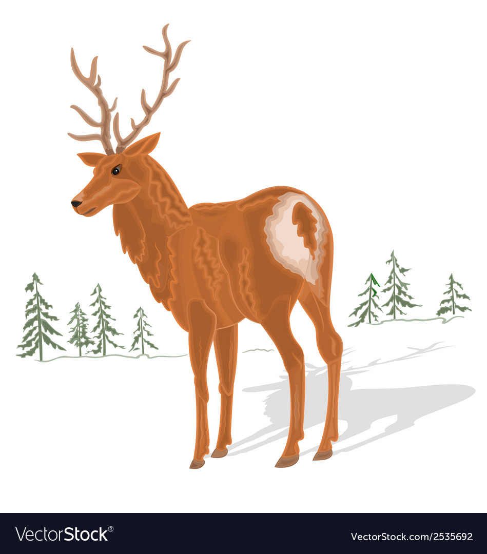 Young-deer vector | Price: 1 Credit (USD $1)