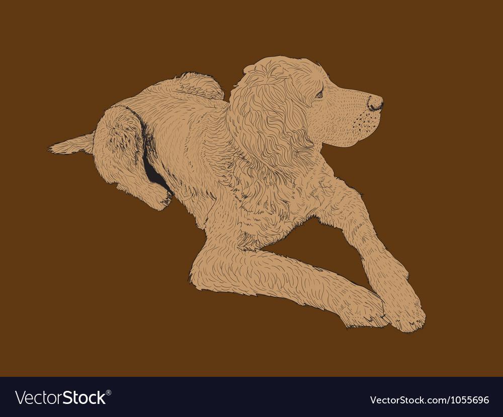 Gentle dog vector | Price: 1 Credit (USD $1)