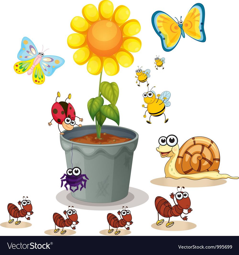 Plant and insects vector | Price: 1 Credit (USD $1)
