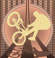 Bmx biker vintage design vector