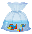 A plastic pouch with three fishes vector