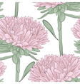 Seamless background with pink flowers aster vector