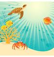 Sunny underwater life vector