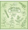 Outline herbs set vector