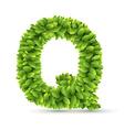 Letter q alphabet of green leaves vector